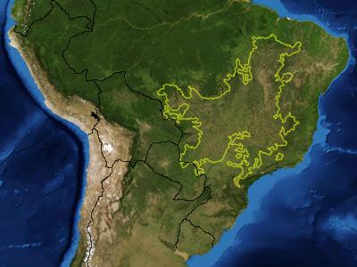 Cerrado_ecoregion