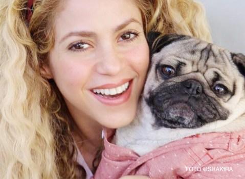 Shakira e Doug The Pug