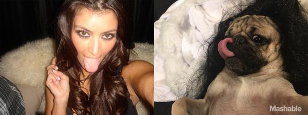 Kim Kardashian e Doug The Pug