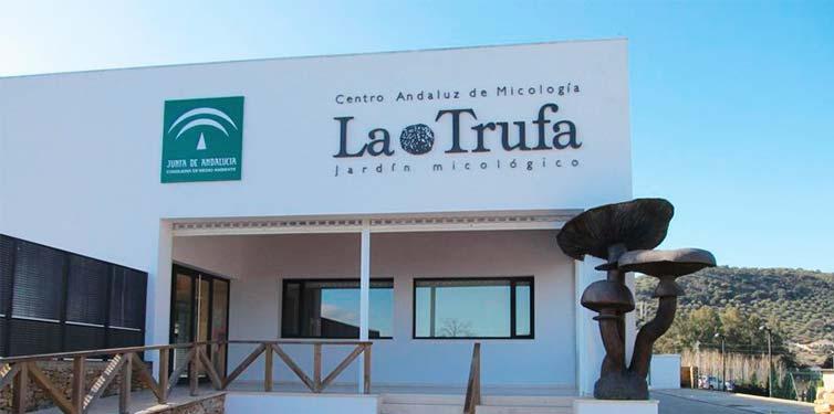 Visita al Jardín Micológico La Trufa y Priego de Córdoba