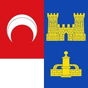 Bandera Castilla y Leon