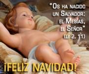 BannerFelizNavidad2014