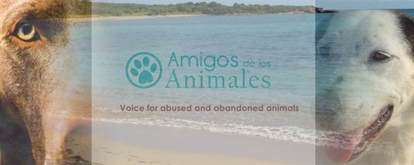 Voice for abused and abandoned animals
