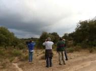 Observando la biodiversidad de Campanarios de Azaba.