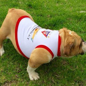 Camiseta Liga de Quito para Bulldog
