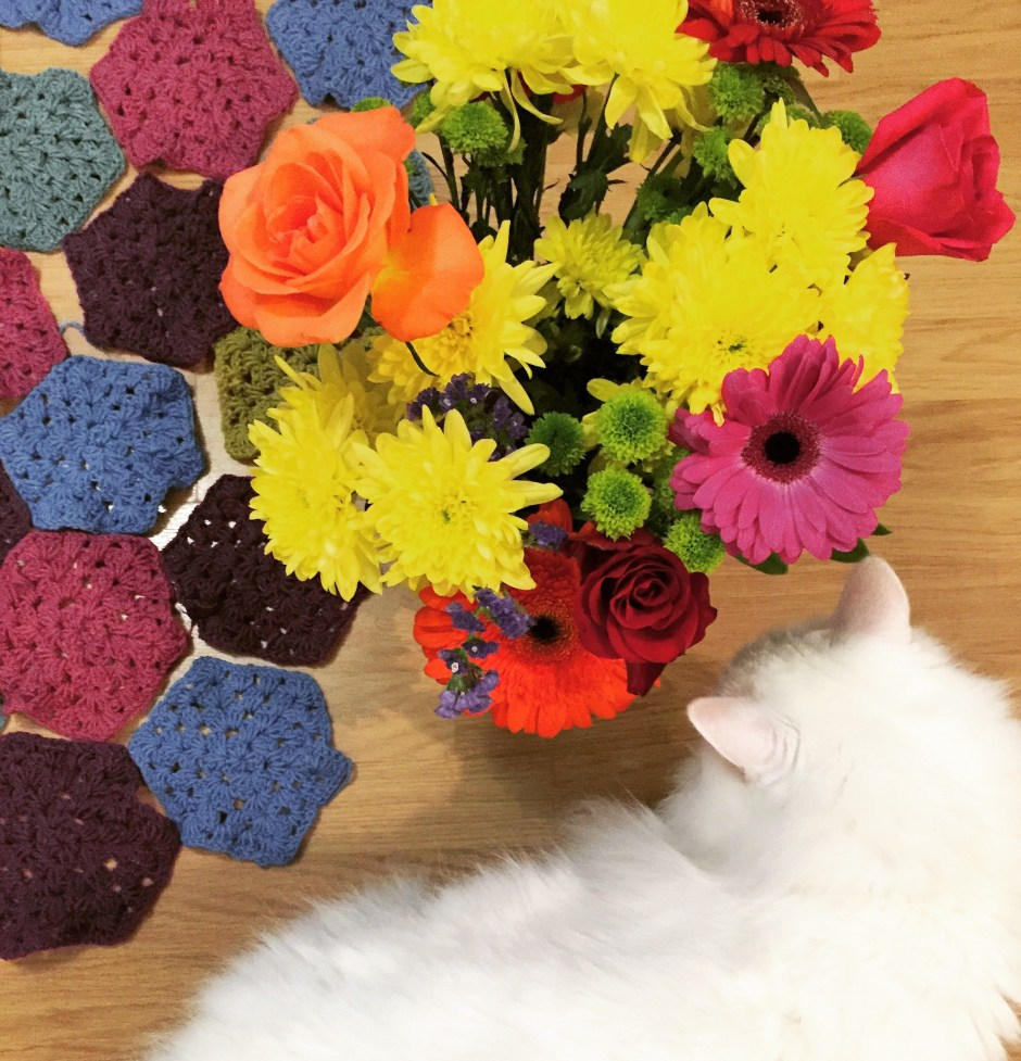 Crocheted blanket hexagons and a cat