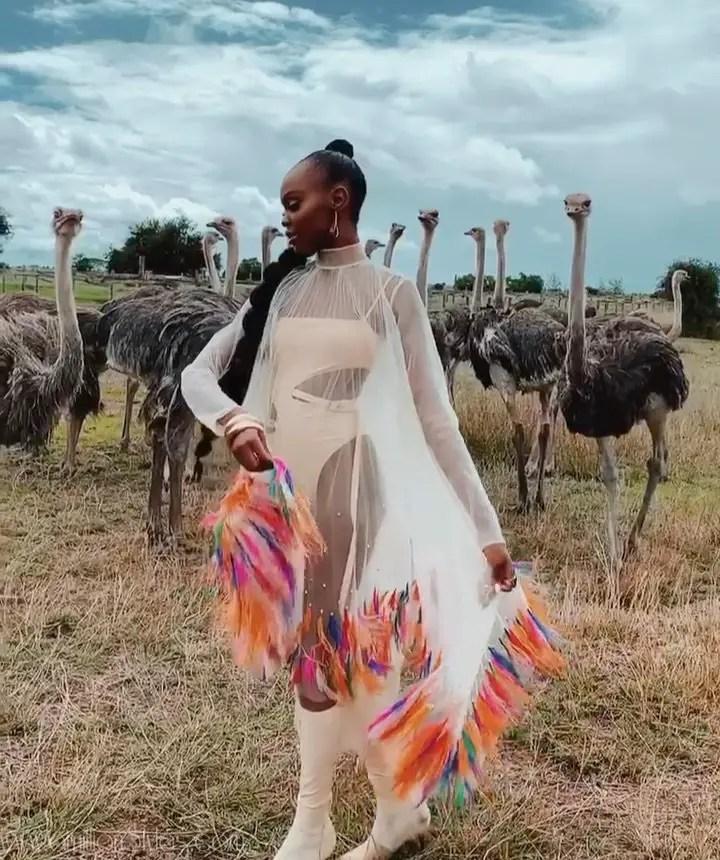 Miss Universe Kenya 2019 Looking Fabulous In This Wildlife Photoshoot