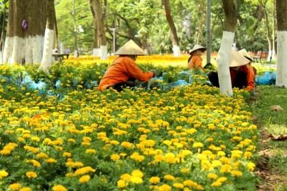 Parco intorno al lago Hoan Kiem