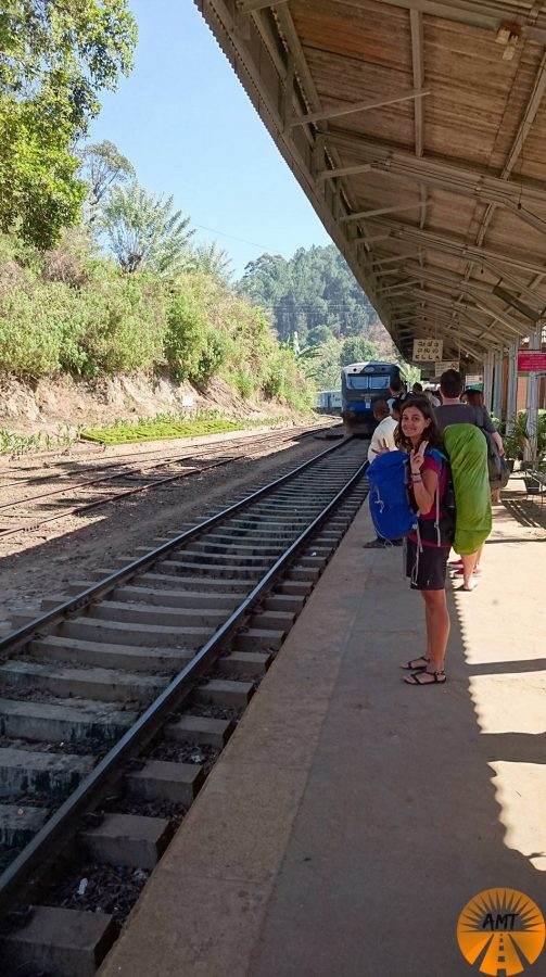 6b43b4f31f3b ELLA TO KANDY TRAIN  ONE OF THE BEST TRIPS EVER -