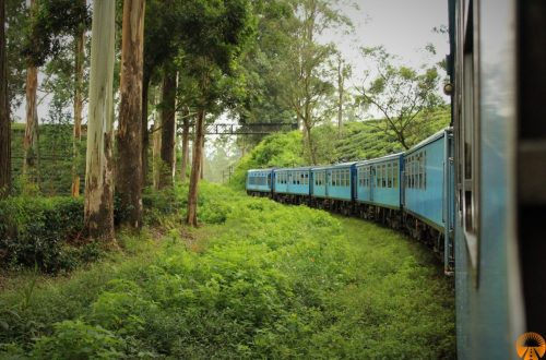 Ella-Kandy train Sri Lanka