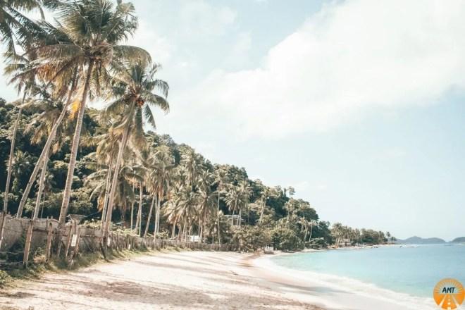 Las Cabanas spiaggia el nido come andare