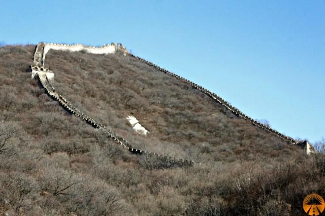 Ox Horn Corna del Bue muraglia cinese