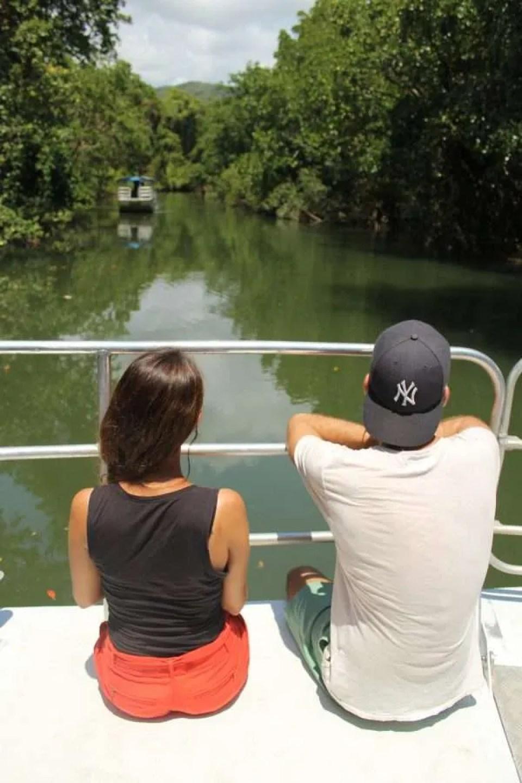 daintree river cruise crocodiles