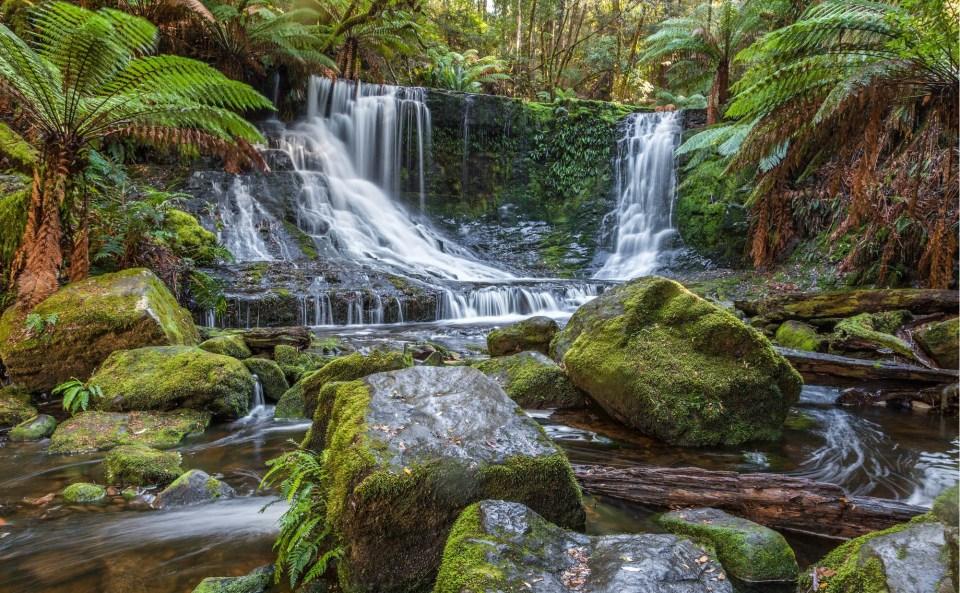 Cascate Tasmania Horseshoe Falls Dan Broun