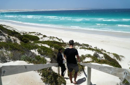 South Australia itinerary guide 2 weeks