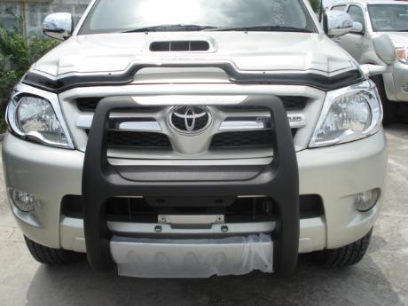 front bumper guard