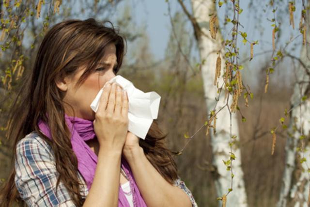 baies de goji allergie