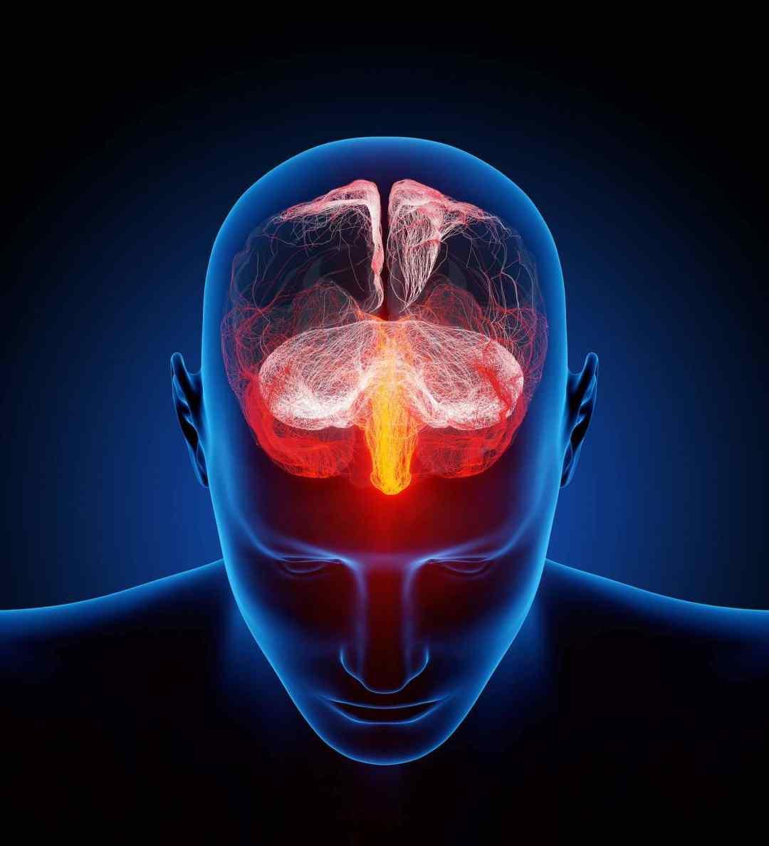 noix de cajou bienfaits : bon pour le cerveau
