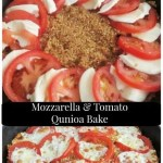 Mozzarella and Tomato Quinoa Bake