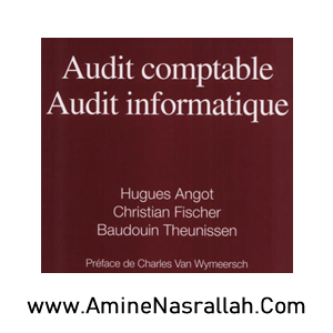 Audit Comptable- Audit Informatique