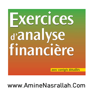 Exercices d_Analyse Financière