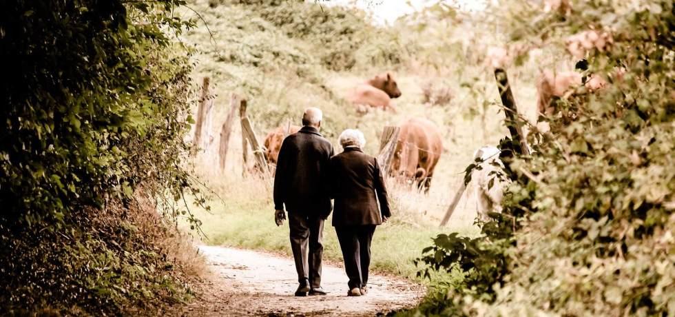 idosos séniores