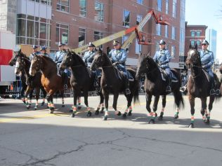 BPD and their horses