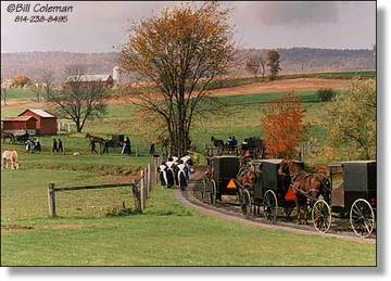 Bill_coleman_amish_gathering_2