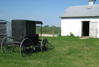 Amish In Minnesota