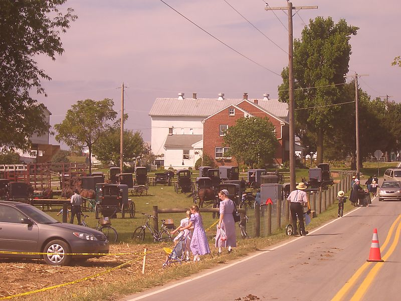 Clinic for special children Amish auction Lancaster PA