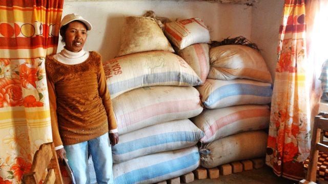 Grenier à riz de Sahamadio