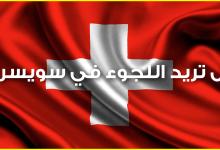 Photo of هل تريد اللجوء في سويسرا ؟ تعرف إذن على الطرق الصحيحة لتكوين ملف طلبك بشكل صحيح