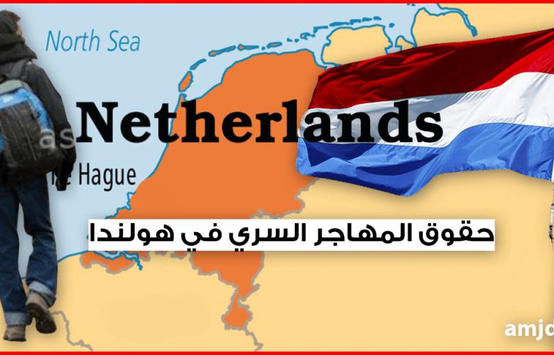 حقوق المهاجر السري في هولندا .. تعرف على حقوقك في هولندا بغض النظر عن وضعيتك القانونية
