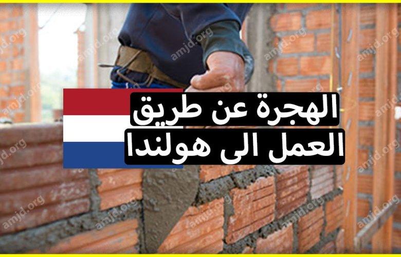 تعرف على أهم الشروط والاجراءات المتعلقة بـ العمل في هولندا لسنة 2018