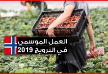 Photo of الهجرة الى النرويج 2019 .. لمن يبحث عن العمل الموسمي في النرويج هذه فرصتك