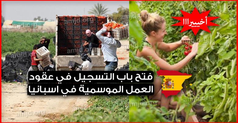 Photo of عاجل .. فتح باب التسجيل في عقود العمل الموسمية في اسبانيا 2019 (الحاضر يعلم الغايب)