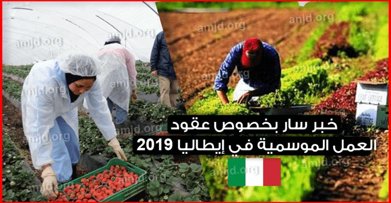 Photo of خبر سار .. سالفيني يوافق على مرسوم التدفقات 2019 لجلب أكثر من 30 ألف عامل أجنبي
