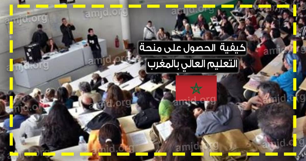 منحة التعليم العالي بالمغرب