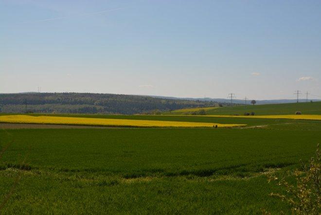 Rapsfelder in Hessen