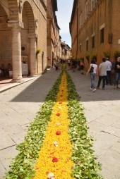 Pienza Prozession