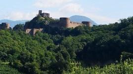 Ruine Sigmundskron