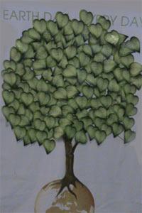 עץ הרעיונות