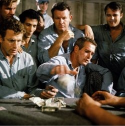 Cool Hand Luke - Paul Newman