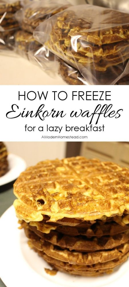 These freezer waffles have seriously saved the day more than once! Talk about a quick and delicious breakfast! These things are amazing!! Einkorn freezer waffles for everyday!!