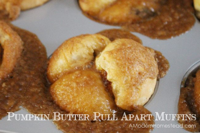 Pumpkin Butter filled Pull Apart Muffins with Crunchy Caramel Glaze