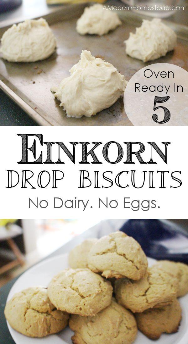 easy drop biscuits recipe