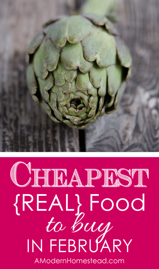 I love buying food in season and this is a great guide for saving money on things you never even thought of! What to buy in February to save money and eat well!