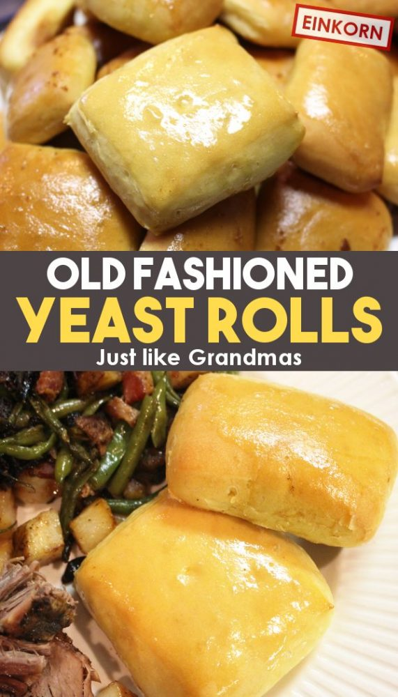 old fashioned homemade yeast roll recipe