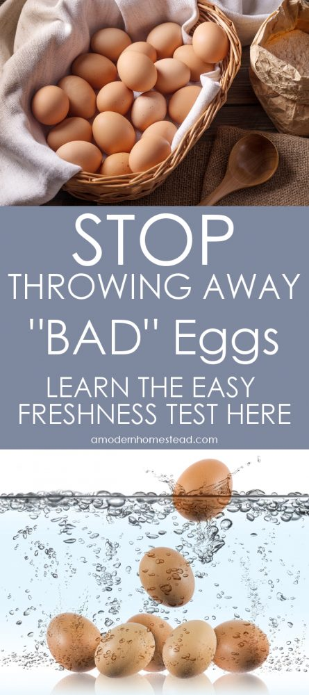 "Never throw away another ""BAD"" egg! Learn the easy egg freshness test now!"