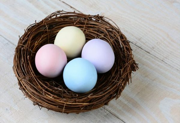 Natural dye easter eggs in nest